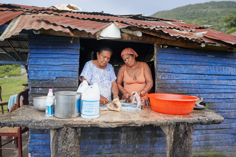 Two ladies butchering chickens in the countryside Dominican Republic